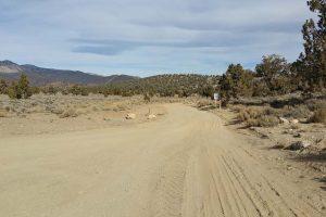 4 - CARMA Road Restoration